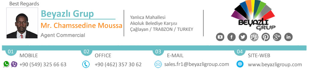 Agent commercial BEYAZLI GROUP